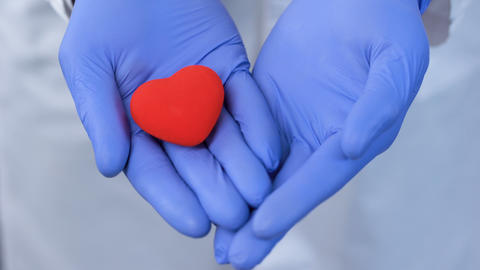 Caring hands holding heart, donation and implantation, charity in hospitals Live Action