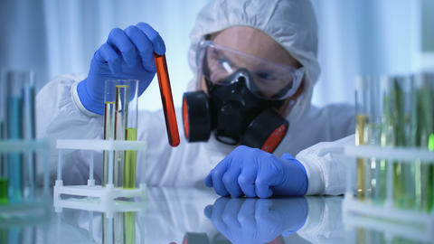 Male chemist checking test tubes with biohazard substance, toxicology testing Footage