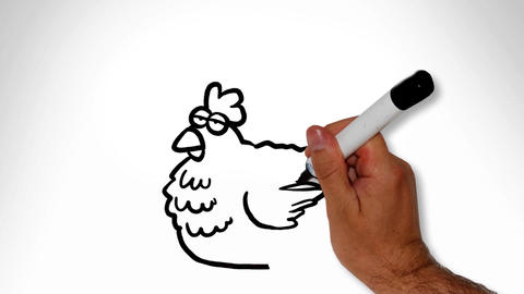 Chicken and egg Animation