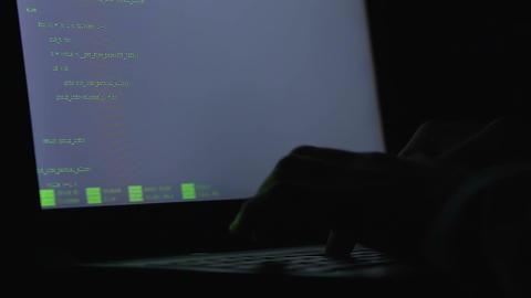 Freelancer hands programming on laptop, modern occupation, code developer, virus Live Action