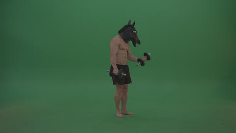 Ripped man with horse head lifts dumbells over chromakey background Live Action