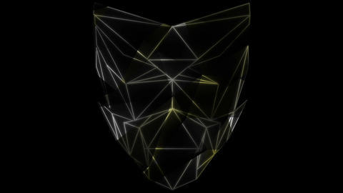 Motion face polygonal shadow lines vj loop art edm visuals HD Live Action