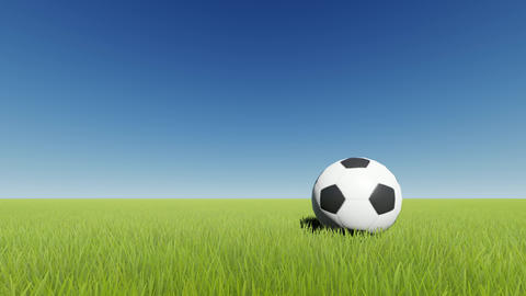 Soccer ball on green grass Footage