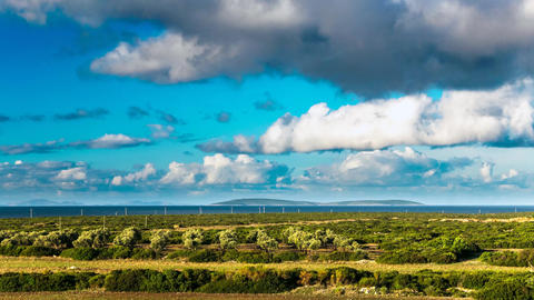 Clouds over the green field, olive trees and sea view in a distance. Timelapse 영상물