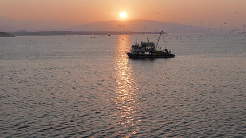 Fishing trawler surrounded by many seagulls with sunrise on the background. 4k Archivo
