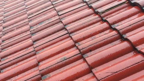 Rain Falling onto Red Tiled Roof ビデオ