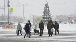People cross city road at pedestrian crossing during blizzard (snowstorm) 영상물