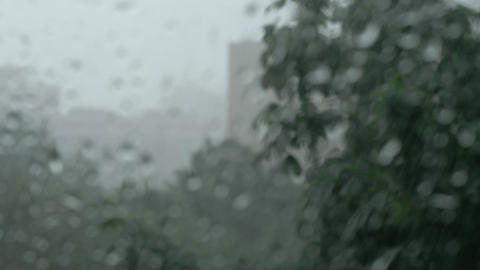 Summer rainstorm outside, view through the window Live Action