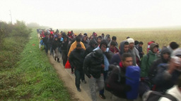 REFUGEES AND MIGRANTS WALKING EU Footage