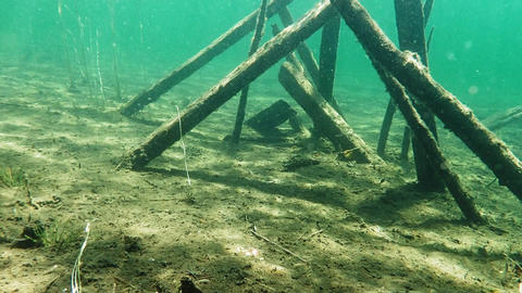 Underwater remains of collapsed wooden dock Footage