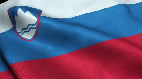 Slovenia Flag Seamless Looping Waving Animation Animación
