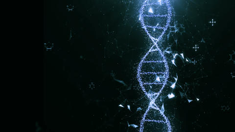 DNA 4 Animation