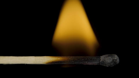 Macro fire burning on matchstick, studio shot isolated on black background Live Action