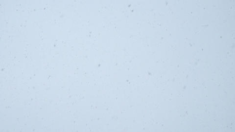 Snowfall on the background of bright sky Archivo