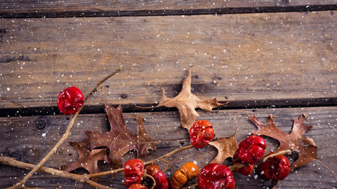 Falling snow with Christmas leaves on wood Animation