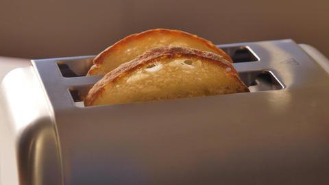 Toast pops up-Modern Toaster Live Action