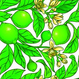 lime vector pattern Vector