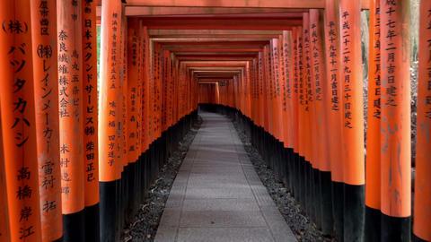 Walking inside Fushimi Inari Taisha, a Shinto shrine in Kyoto, Japan Footage