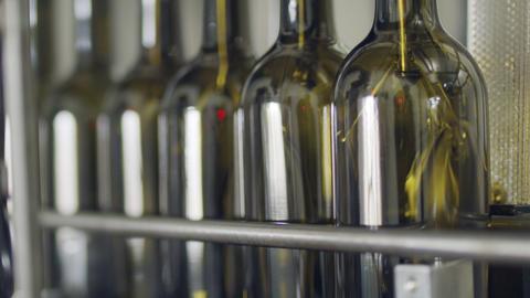 Filling of olive oil bottles in a bottling factory Footage