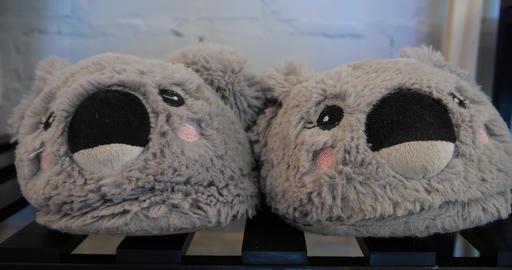 4K - Slippers on the legs form koalas Live Action