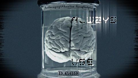 Always Use Brain! stock footage