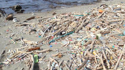 海岸のゴミ ビデオ