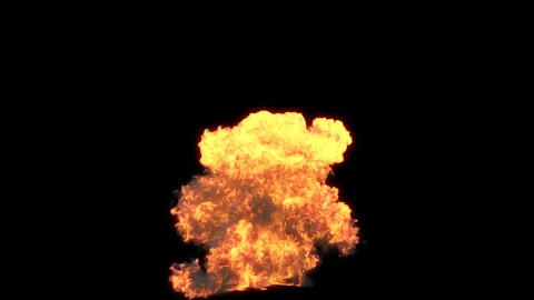 Gasoline explosion 2 Animation