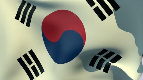 Flag of South Korea Stock Video Footage