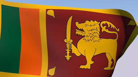 Flag of Sri Lanka Stock Video Footage
