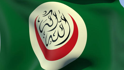 Flag of the Organisation of Islamic Cooperation Stock Video Footage