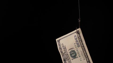 Dollars on fishing hook Footage