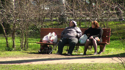 Fat women on the bench Stock Video Footage
