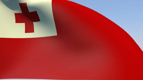 Flag of Tonga Stock Video Footage