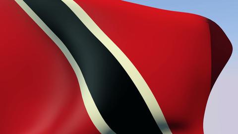 Flag of Trinidad and Tobago Stock Video Footage