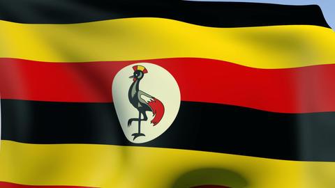 Flag of Uganda Stock Video Footage