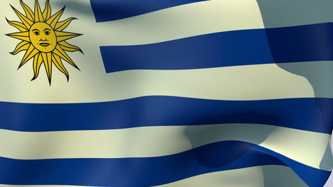 Flag of Uruguay Stock Video Footage