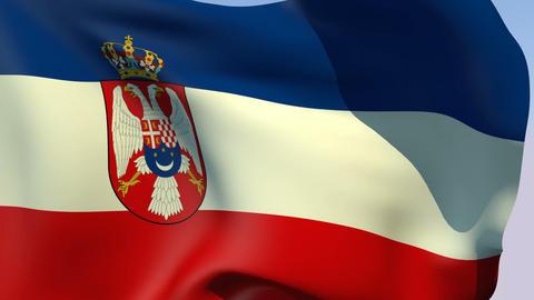Flag of Yugoslavia Kingdom Stock Video Footage