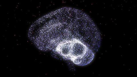 Brain 1 Stock Video Footage