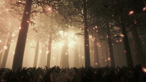 Deep Forest Fairy Tale Scene Fireflies 3D render Animation
