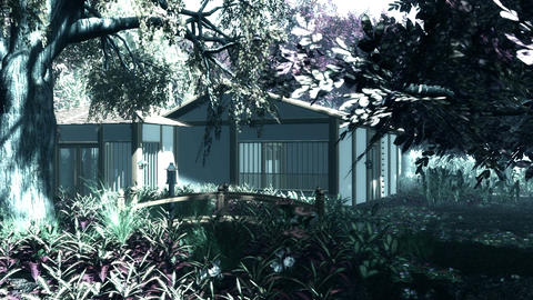 Japanese Garden and House 2 Stock Video Footage