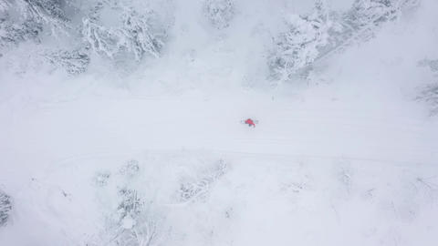 Top view of a man who snowboarding down a mountainside among snowy trees Live Action