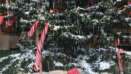 Synthetic Snow Falling on Indoor Christmas Tree Footage
