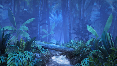 Night tropical jungle with a brook Archivo