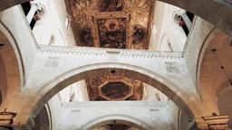 The Dome of the Basilica of Saint Nikola, Bari Italy Footage