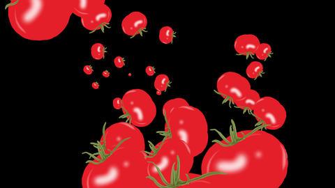 Tomato Animación