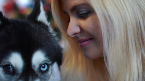 Portrait of a girl flirting with her husky. Girl and dog together Footage