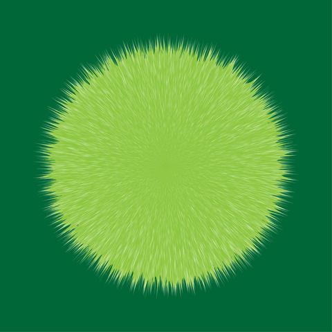 Green Fluffy Hair Pom, 3D illustration フォト