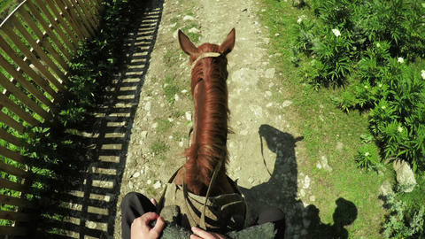 Astride on horse summer 영상물