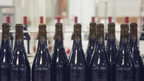 Red Wine bottles on a conveyor belt in a wine bottling factory 영상물