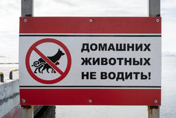 Poster in Russian: Do not drive pets! フォト